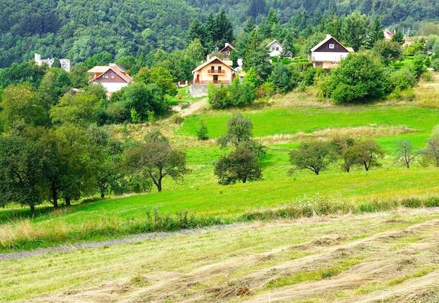 Vista em banska stiavnica eslováquia com feno no prado