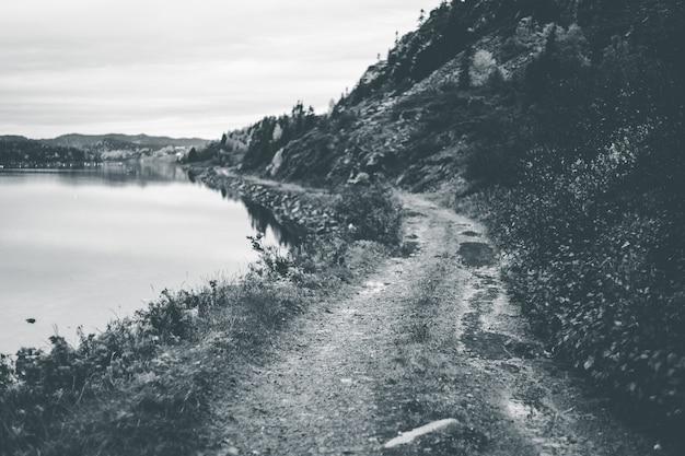 Vista em escala de cinza da montanha perto do lago