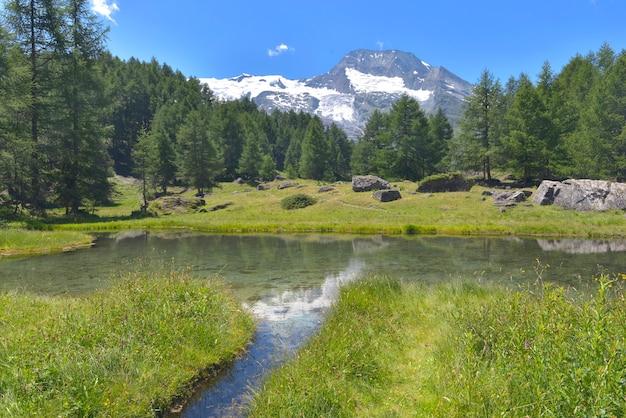 Vista em um rio em um vale de vegetação com vista na floresta e geleira no verão