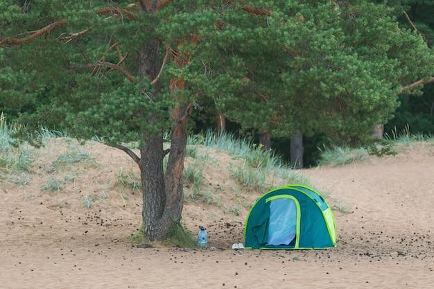 Vista em uma barraca sob uma árvore em uma praia ao entardecer
