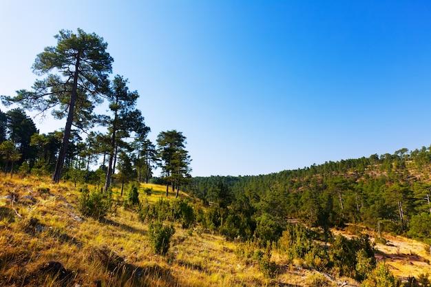 Vista ensolarada de serrania de cuenca