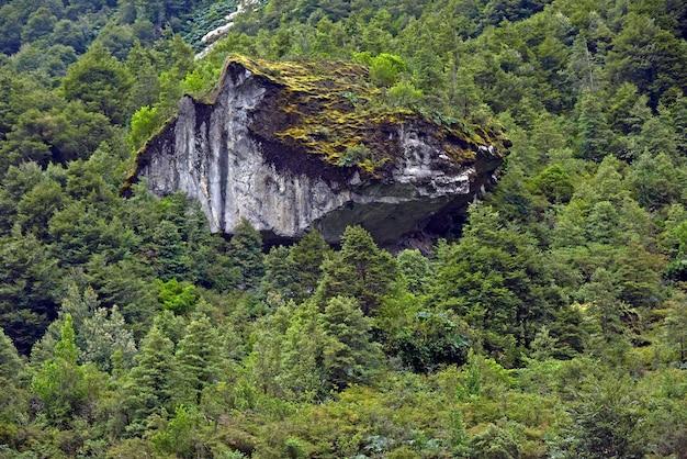 Vista fascinante da montanha rochosa coberta de árvores