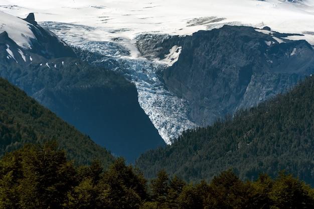 Vista fascinante das montanhas cobertas de árvores e neve - perfeita para o fundo