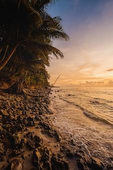 Vista fascinante do oceano calmo e das árvores na costa durante o pôr do sol na indonésia