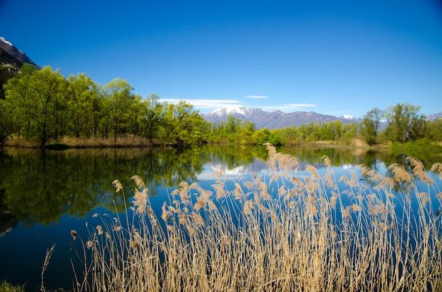 Vista fascinante do reflexo das árvores e do céu na água com uma montanha
