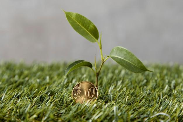 Vista frontal da moeda na grama com a planta