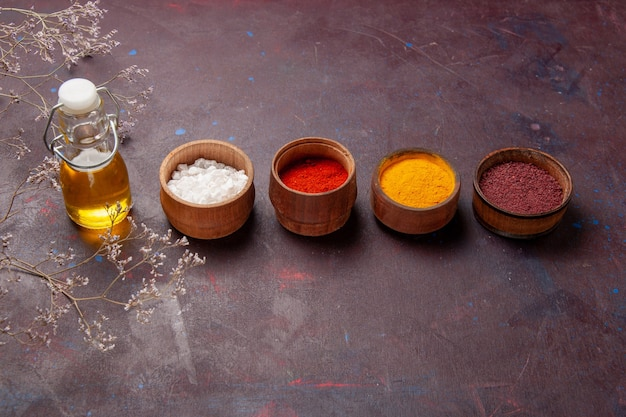 Vista frontal de diferentes temperos com azeite de oliva no espaço escuro