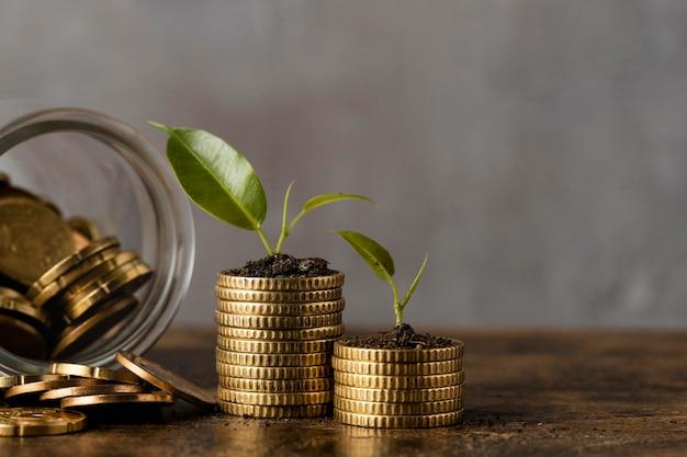 Vista frontal de duas pilhas de moedas com jarra e plantas