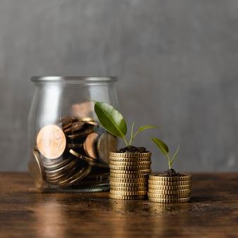 Vista frontal de duas pilhas de moedas com plantas e jarra