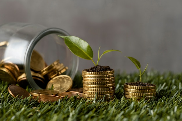 Vista frontal de duas pilhas de moedas na grama com jarras e plantas