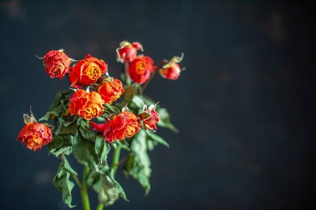 Vista frontal de flores vermelhas murchas na superfície escura