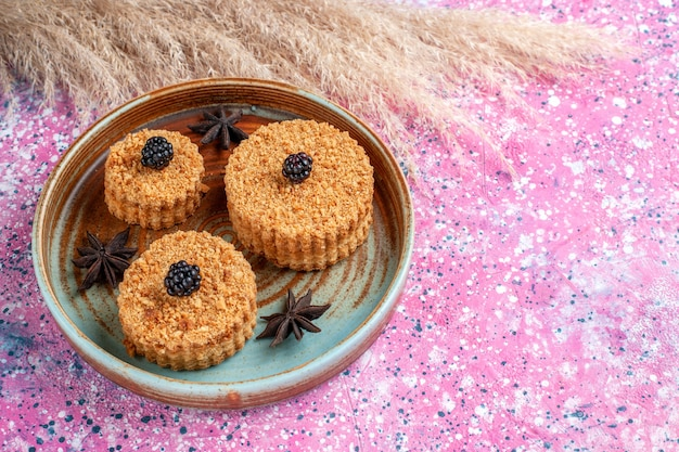Vista frontal de pequenos bolos gostosos, doces e deliciosos dentro do prato na superfície rosa Foto gratuita