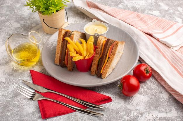 Vista frontal de sanduíches saborosos de torradas com presunto de queijo dentro do prato com batata frita creme de leite e óleo no branco