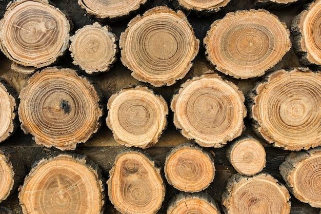 Vista frontal de toras de madeira