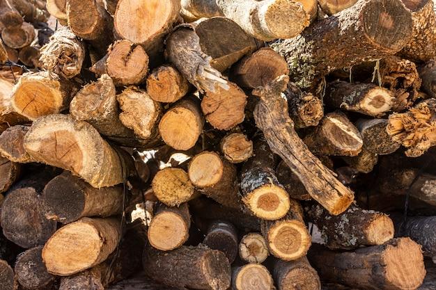 Vista frontal de troncos e galhos de madeira cortada