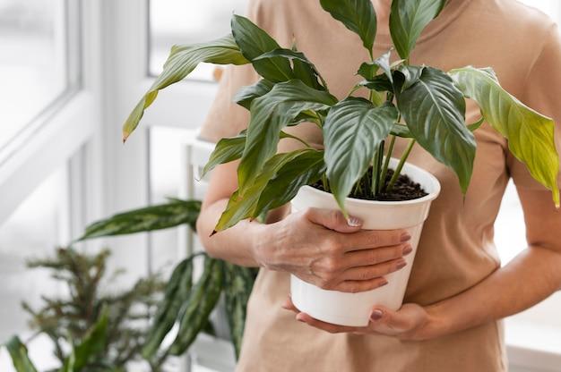 Vista frontal de uma mulher segurando um vaso de planta de interior