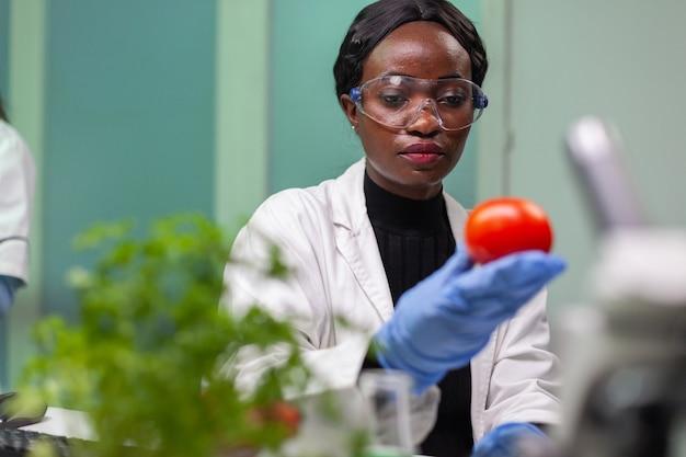 Vista frontal de uma pesquisadora bióloga analisando tomate injetado com dna químico