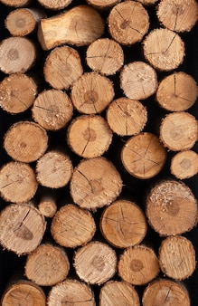 Vista frontal do conceito de arranjo de madeira
