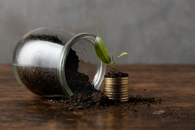 Vista frontal do frasco com sujeira e moedas empilhadas com planta