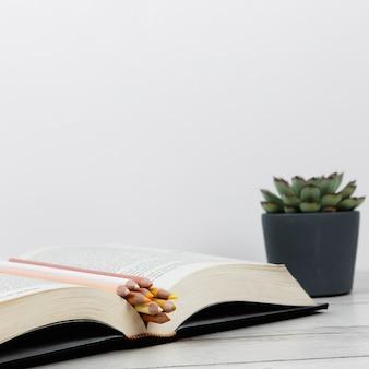 Vista frontal do livro aberto no fundo liso, com espaço de cópia