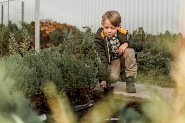 Vista frontal do menino em um viveiro de árvores
