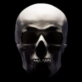 Vista frontal do modelo de gesso do crânio humano isolado no fundo preto com traçado de recorte. conceito de terror, aprendizagem de fisiologia e desenho.
