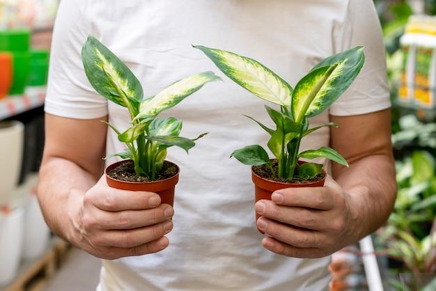 Vista frontal homem segurando plantas pequenas