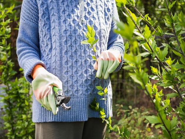 Vista frontal mulher cortando folhas de seu jardim