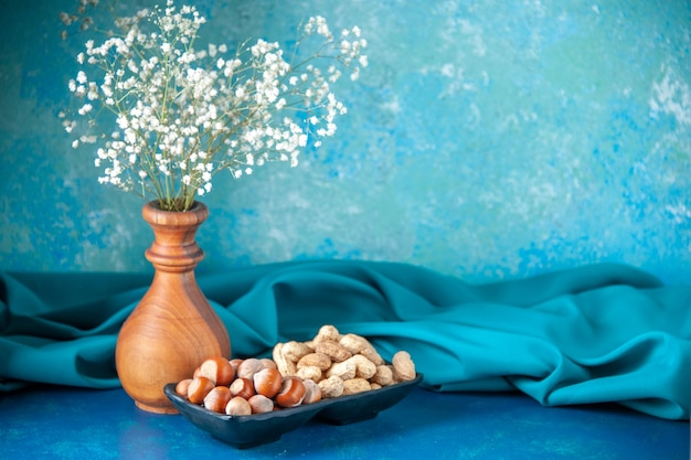 Vista frontal, nozes, amendoins e avelãs na cor azul lanche cips noz nogueira foto planta árvore