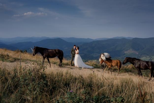 Vista idílica do casal de noivos cercada com cavalos no dia ensolarado nas montanhas