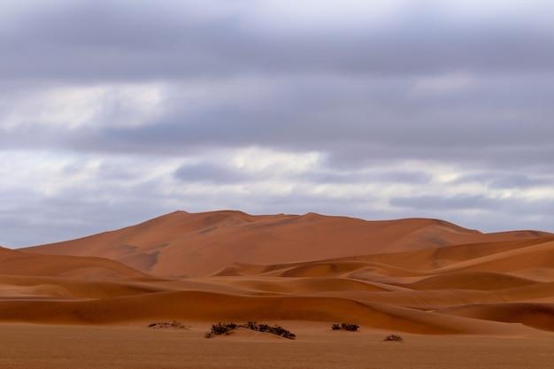 Vista incrível das dunas de areia no deserto de namib. imagem artística. mundo da beleza.