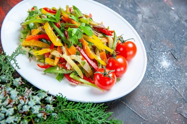 Vista inferior da salada de vegetais em prato oval e tomate cereja em superfície vermelha escura