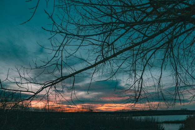 Vista inspiradora da luz do pôr do sol