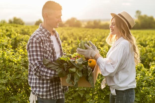 Vista lateral casal coletando legumes