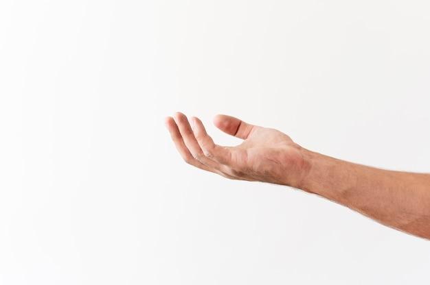 Vista lateral da mão pedindo doações de alimentos