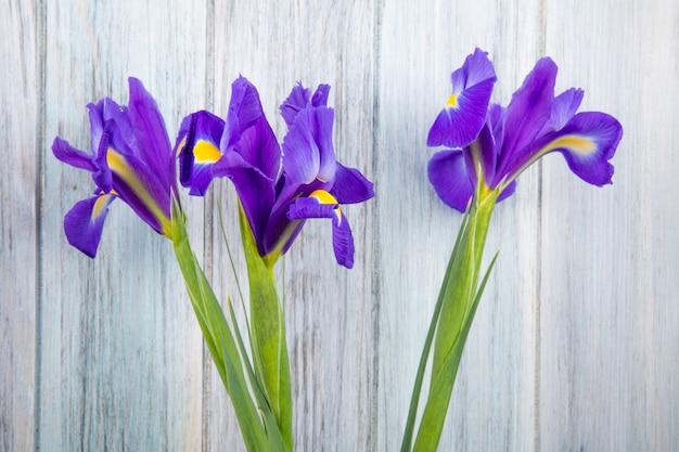 Vista lateral das flores de íris de cor roxa escura, isoladas no fundo de madeira