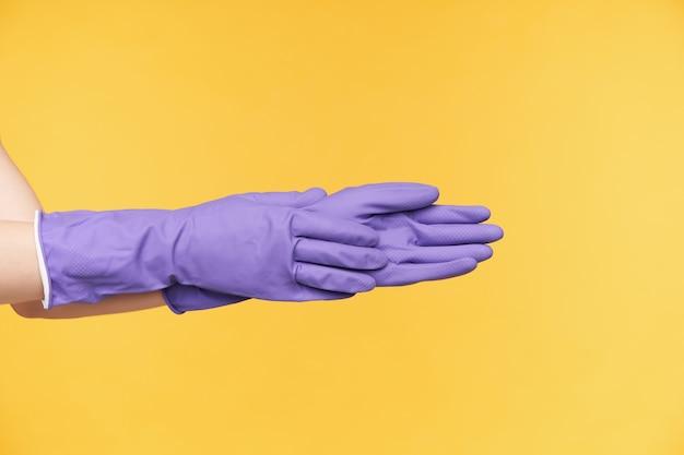 Vista lateral de duas mãos dobradas juntas enquanto posavam sobre fundo amarelo em luvas de borracha violeta, preparando-se para limpar a casa. casa e conceito de vida cotidiana