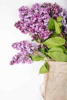 Vista lateral de flores lilás em um saco em fundo branco