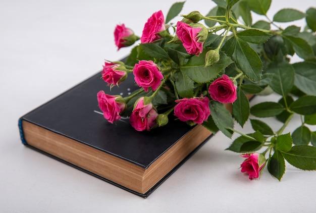Vista lateral de incríveis rosas cor de rosa com folhas em um fundo branco