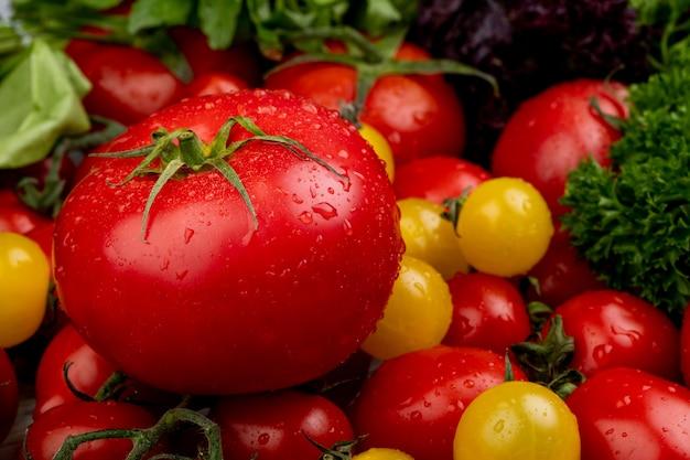 Vista lateral de legumes como coentro de espinafre e tomate
