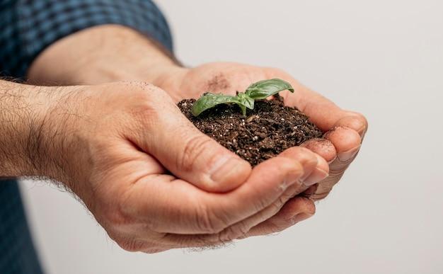 Vista lateral de mãos masculinas segurando o solo e a planta em crescimento