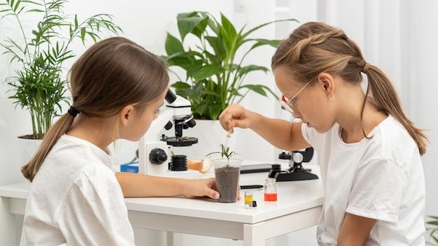 Vista lateral de meninas aprendendo ciência com plantas