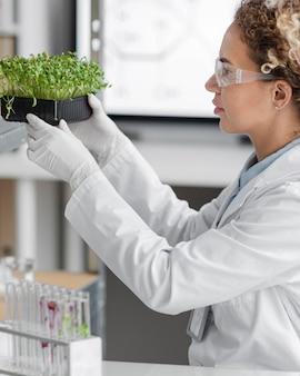 Vista lateral de pesquisadora no laboratório com óculos de segurança e planta
