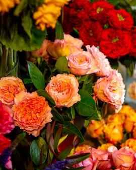 Vista lateral de rosas inglesas de cor damasco por david austin