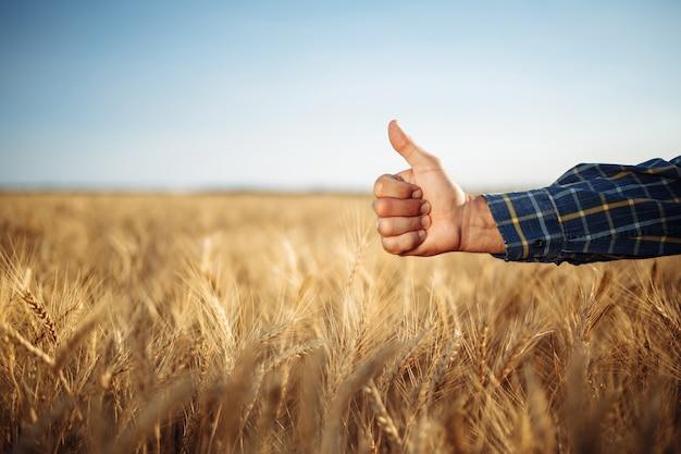 Vista lateral de um agricultor no campo fazendo sinal de positivo