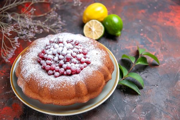 Vista lateral de um bolo apetitoso com folhas de groselha e frutas cítricas