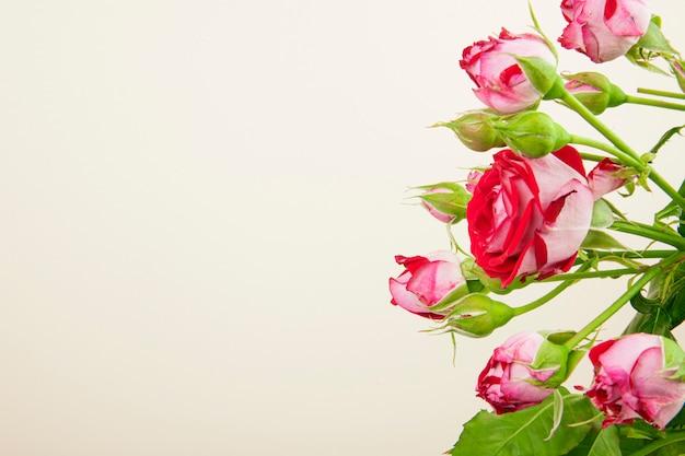 Vista lateral de um buquê de flores rosas coloridas com botões de rosa em fundo branco, com espaço de cópia