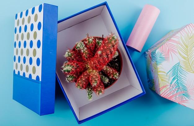 Vista lateral de um cacto em um vaso de flores em uma caixa de presente da caixa no fundo azul