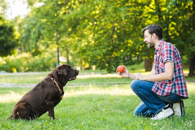Vista lateral, de, um, feliz, homem, tocando, com, seu, cão