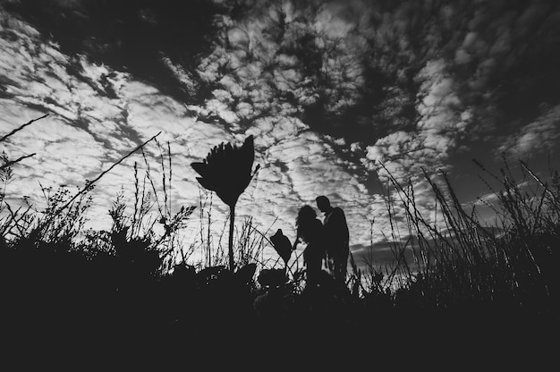 Vista lateral de um homem romântico e uma mulher indo embora na grama do campo, a natureza apreciando o pôr do sol deslumbrante. conceito de linda família de mãos dadas. jovem casal em pé e se beijando. foto em preto e branco.